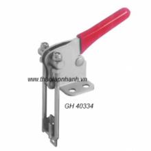 GH-40334-300x300 hn hcm